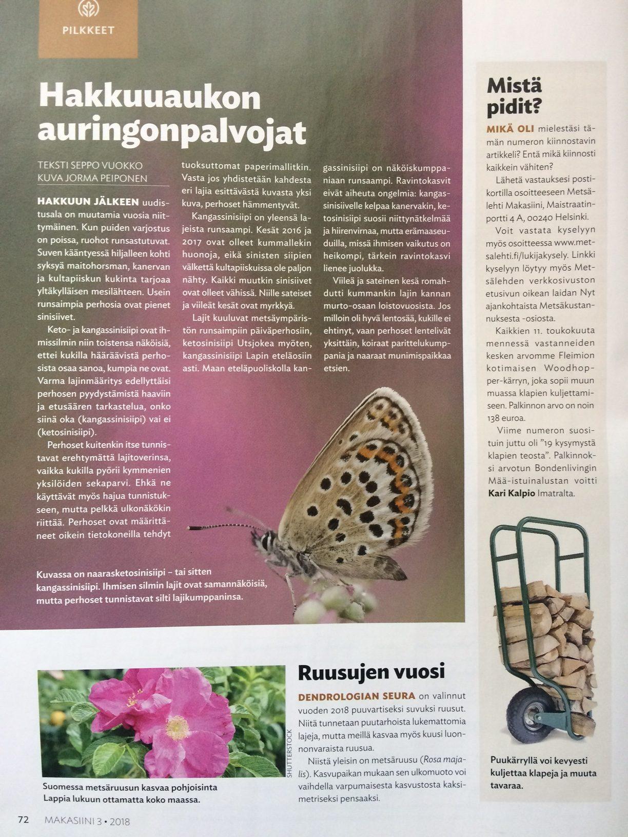 fleimio woodhopper in Metsälehti makasiini 042018